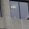 Daredevil raccoon climbs high-rise, drops from about 8 stories
